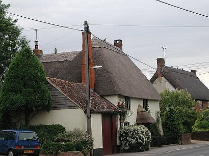 Three houses im Wiltshire with an Owl, Peacock and three ducks